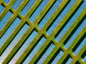 Going green in business with solar panels