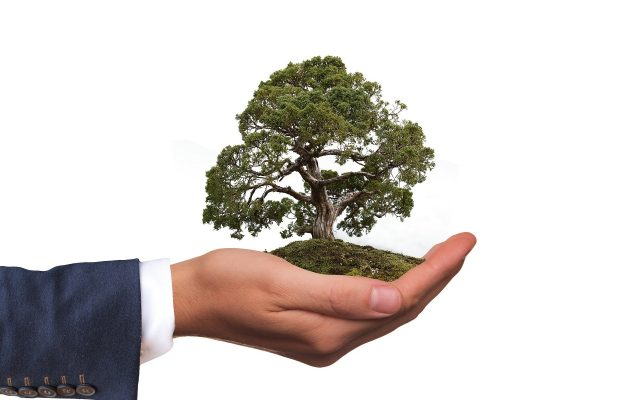 Become an earth friendly business